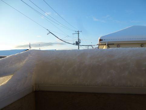 0123雪だよ.JPG