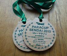 パラカップ2015.JPG
