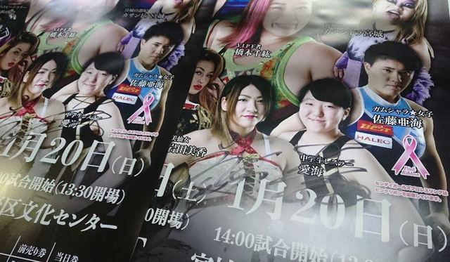 仙女ポスター120.JPG