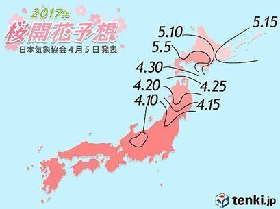 桜開花予想2017.JPG