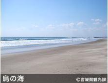 荒浜.JPG