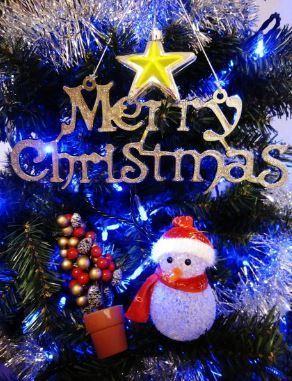 MerryCristmas.JPG